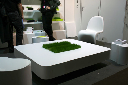 table-basse-herbe-racine-carre